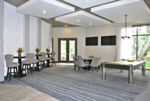 Rec Room The Addison at Tampa Oaks